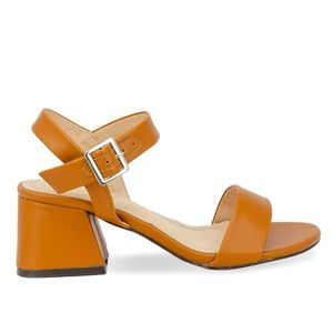 Women's Ankle Strap Tan Chunky Low Heel Sandal